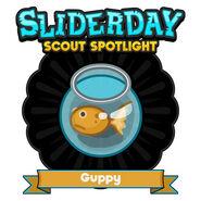 Sliderday guppy sm