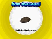 S---akemushrooms.png