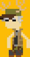 Pixel Chester