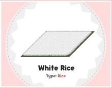 White Rice Sushi.png
