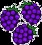 Blackberries Transparent.png