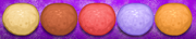 Standard dough donuteria by amelia411-d7ndo1q.png