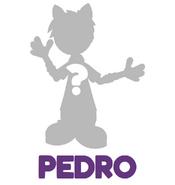 Pedro Blog Post Unknown