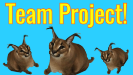 TeamProject.png