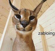 Zabloing