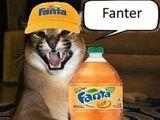 Fanter