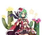 Cactus (Christmas)