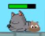 Dung in cat butt