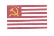 CNASR Flag