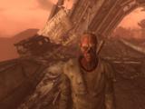 Dust Walkers