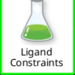 Ligand Constraints.png