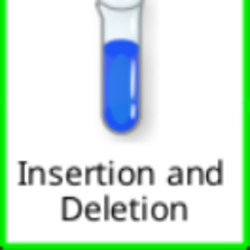 Insertion and Deletion.png