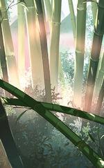 Bg-Basic-Bamboo Rice