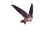 Gate of Trials (Bird's Nest Soup)