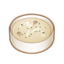 Dish-Mushroom Soup.png