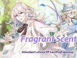 Fragrant Scent