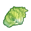 Ingredient-Lettuce.png