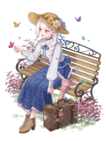Skin-Ddeokbokki-Butterfly Spring