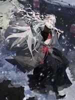 Skin-Dragon & Phoenix-Snowy Plum Search