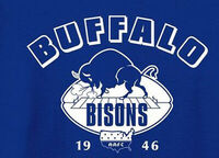 AAFC-Football-Buffalo-Bisons-1946-1949-Mens-Polo-XS-6XL