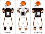 2010 Cleveland Browns season
