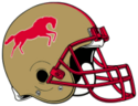 Birmingham Stallions helmet