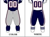 2001 New England Patriots season