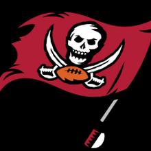 Tampa Bay Buccaneers American Football Database Fandom
