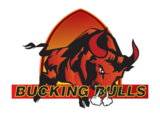 San Bernardino Bucking Bulls
