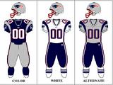 2004 New England Patriots season