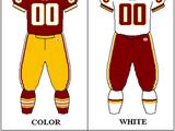 2008 Washington Redskins season