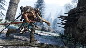 Vikings - the raider in action
