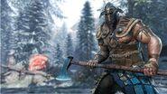 Vikings - the raider hero