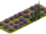 Lavender Lawn