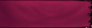Banner Mughals
