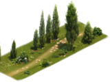 Cypress Pass