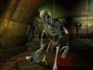Skeleton planescape