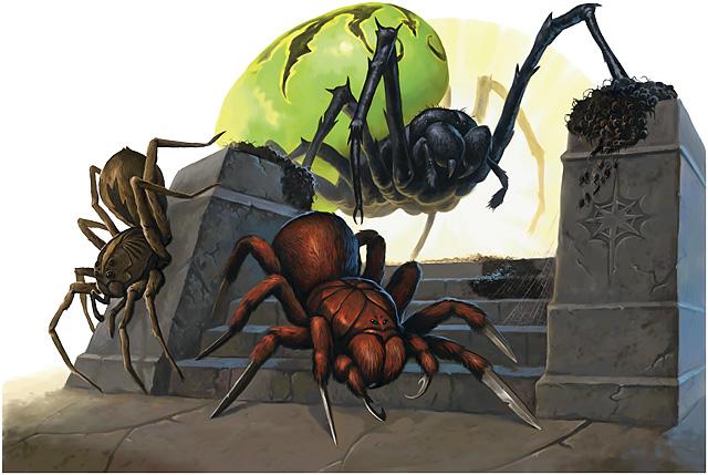Deathjump spider