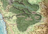 Neverwinter Wood Map