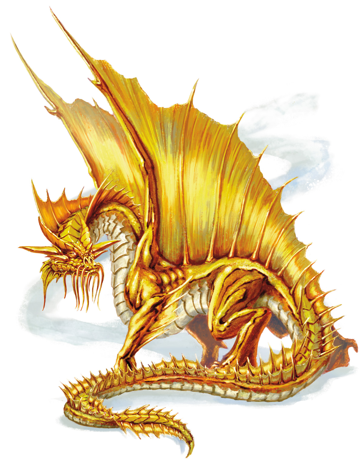 Gold dragon png 5e is lotriderm cream a steroid