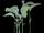 Mergrass