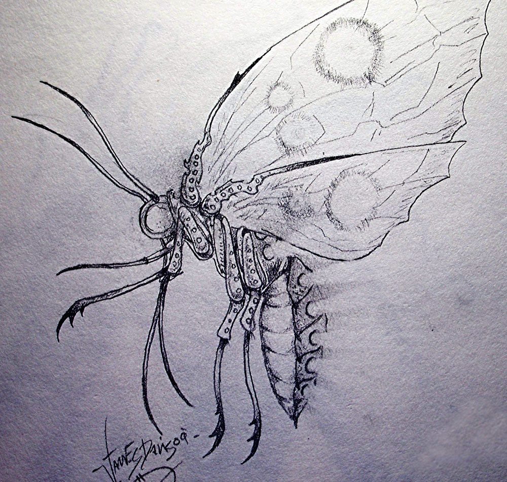 Bone-moth