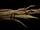 Daggerroot