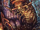 Monstrous centipede