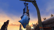 Neverwinter MMO - Creature - Knucklehead Trout