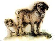 Foo dogs