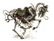 Skeletal riding horse