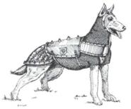Dog Barding