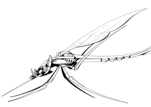 Mosquito (spelljammer)