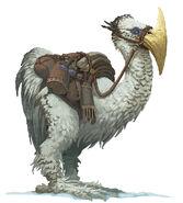 Axe beak-5e